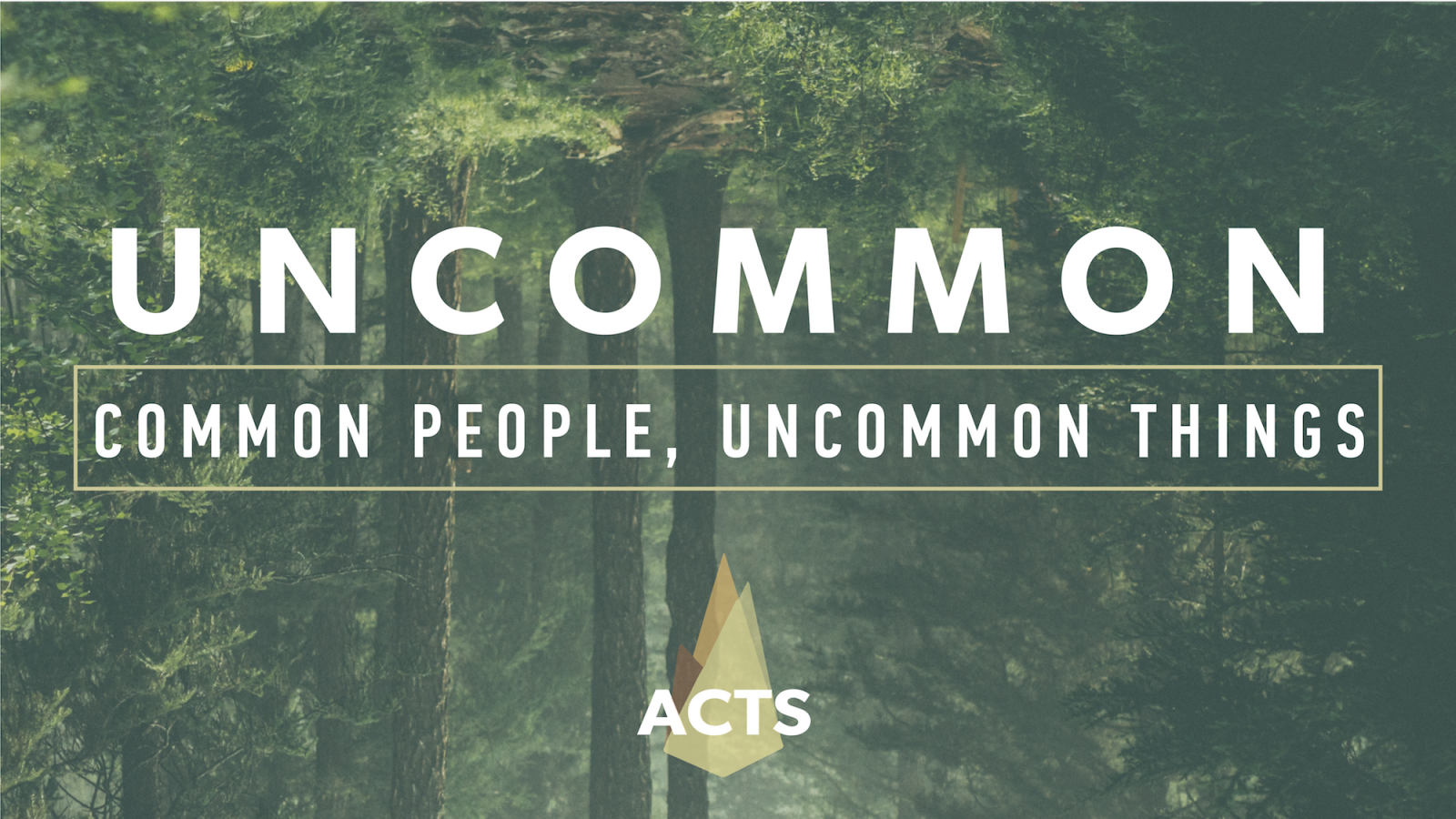 Uncommon: Common People, Uncommon Things